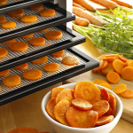 Best Food Dehydrator Reviews 2017 and How you can Prevent your Food