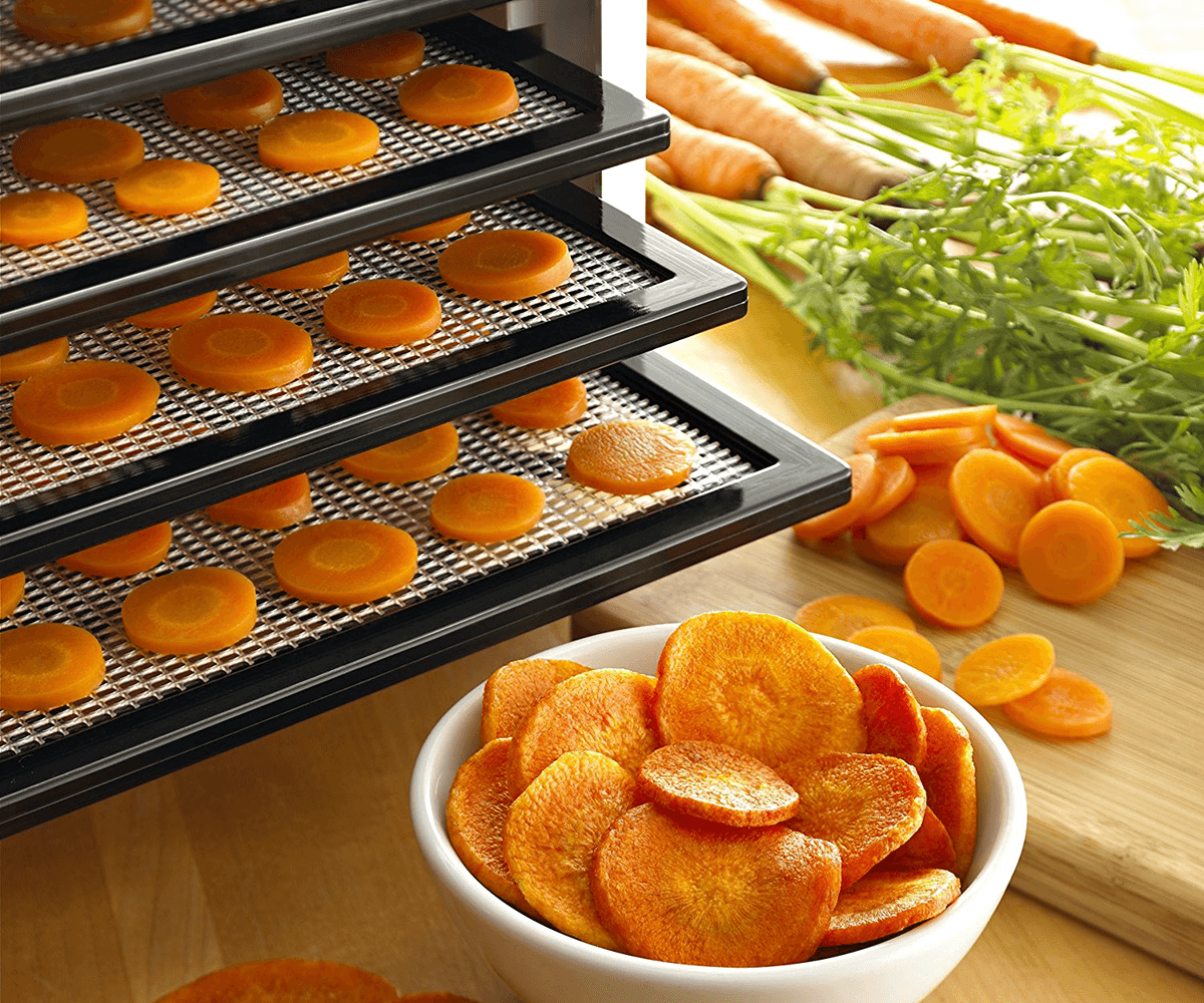 Best Food Dehydrator Reviews
