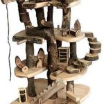 Best Cat Trees Reviews -Guide Cat Lovers 2018