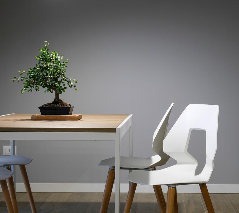 Choosing the Furniture