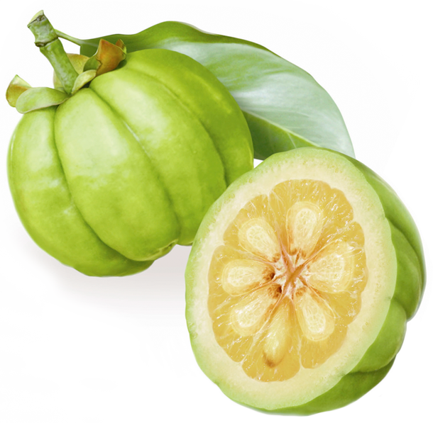 What is Garcinia Cambogia- How And What It could Do