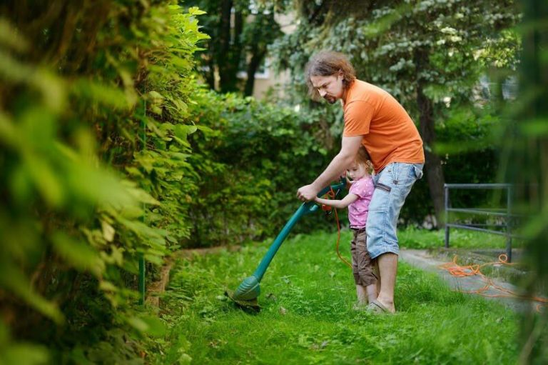 10 Best String Trimmer / Lawn Edger you should have in 2021 Reviews