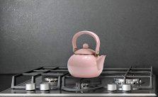 Calypso Basics by Reston Lloyd Enamel-on-Steel Tea Kettle