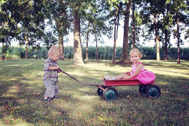 5 Best Wagon for Kids Reviews – Buyer Guide 2021