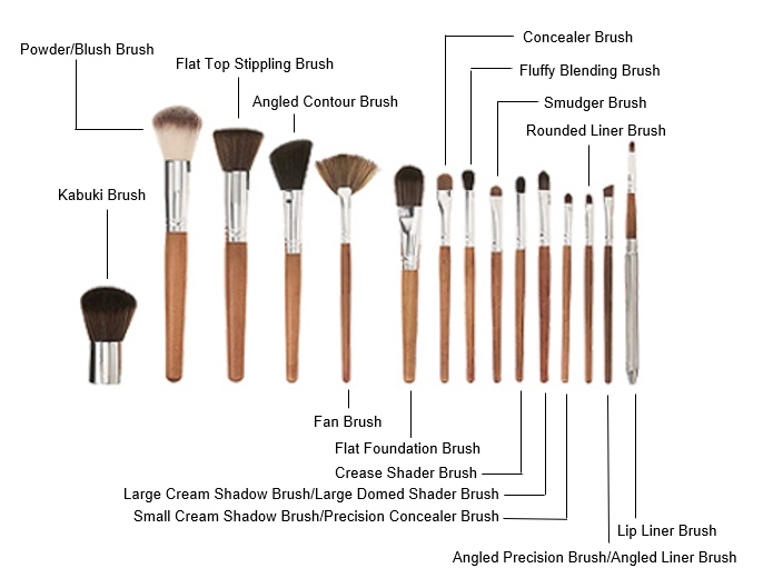 What Brush to Use for Concealer